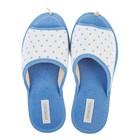 Тапочки женские Domino арт.DKL-15131, цвет голубой, размер 36/37