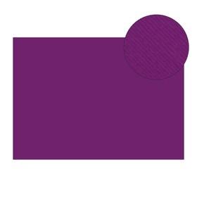 Картон цветной текстур 210*297 мм Sadipal Fabriano Elle Erre 220 г/м фиолетовый VIOLA 13209 Ош