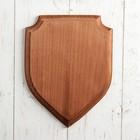 """Медальон для трофеев """"Щит"""", 25 х 19 см, массив бука"""