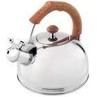Чайник со свистком Wellberg, 2,3 л