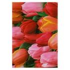 """Блокнот А7, 70 листов на клею """"Тюльпаны"""", твердая обложка, глянцевая ламинация"""
