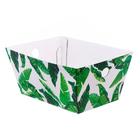 Складная коробка–трапеция «Тропики», 27 х 19,5 х 13 см.
