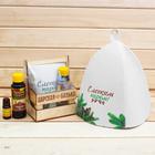 """Банный набор в ящике """"Деревенская банька"""": шапка, аромамасло и ароматизатор"""