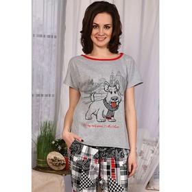 Комплект женский (футболка, брюки) 559 цвет микс, р-р 48