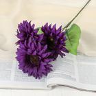 """Цветы искусственные """"Астры"""" три бутона 10*55 см, фиолетовый"""