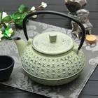 """Чайник с ситом 800 мл """"Жангали"""", цвет светло-зеленый"""