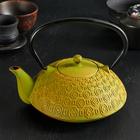 Чайник с ситом «Бурхон», 1,2 л, эмалированное покрытие, цвет зелёный