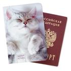 """Обложка для паспорта """"Паспорт котика"""""""