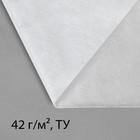 """Материал укрывной, 10 х 1.6 м, плотность 42, УФ, """"Эконом"""""""