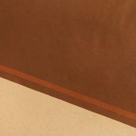 Бумага крафт односторонняя «Бордо», серия Пантон, 50 х 70 см. Ош