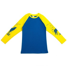 Джемпер для мальчика, рост 146-152 см, цвет синий 50001