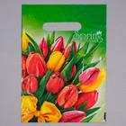 """Пакет """"Весна"""", полиэтиленовый с вырубной ручкой, 20 х 30 см, 30 мкм"""
