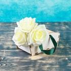Ящик прямоугольный для цветов, с ручкой, белый 19х8х10см
