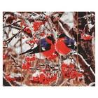 "Картины по номерам на дереве 40х50 ""Снегири""  GXT8859"