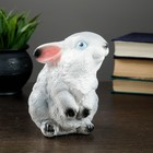 "Копилка ""Маленький заяц"" 12 х 11 х 16 см"