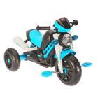 Велосипед трехколесный Micio XG6333, цвет синий