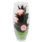 """Композиция в вазе """"Мунглинг"""", розы персиковые, 10 х 10 х 25 см"""