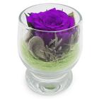 """Композиция в стеклянном стакане """"Акватик"""", роза лиловая, 6,5 х 6,5 х 8,5 см"""