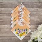 Набор детских носовых платков 45453КС-467 Etteggy (6шт) 25х25см печать полотн. 66г/м, хл100%   32897