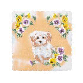 Набор детских носовых платков 45453КС-467 Etteggy (6шт) 25х25см печать полотн. 66г/м, хл100%   32897 Ош