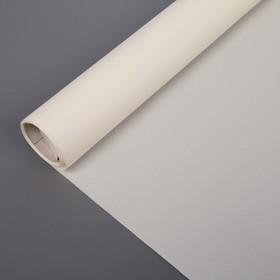"Штора рулонная 60х160 см ""Эконом"", цвет белый"