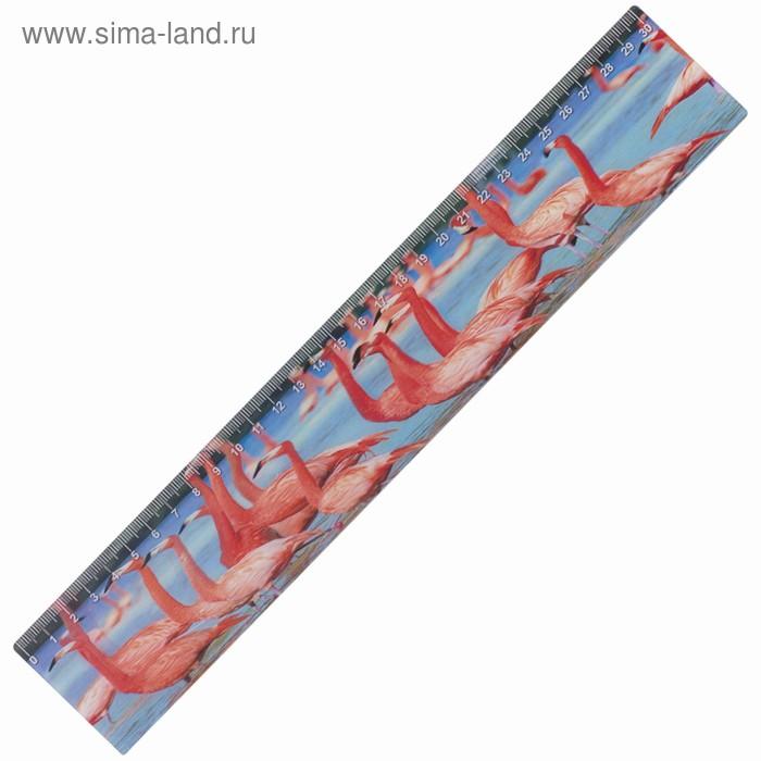 Линейка 30 см, 3D BRAUBERG «Фламинго», европодвес