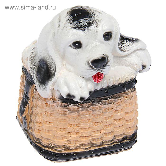 "Копилка ""Собака в корзине"""