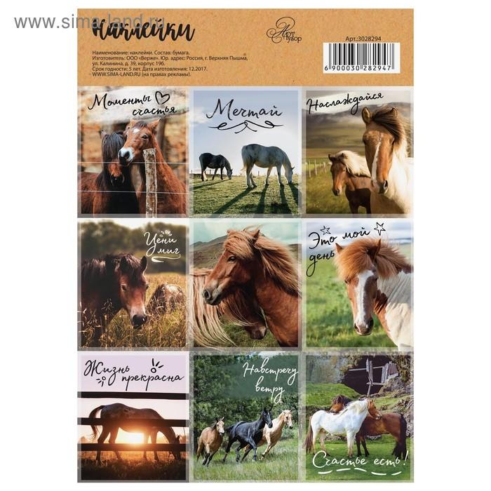 """Наклейки декоративные """"Лошадки"""" 11 х 16 см"""