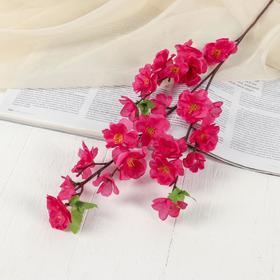 """Цветы искусственные """"Сакура нежность"""" 4*60 см, малиновый"""