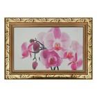 """Картина """"Красивая орхидея"""" 27*37 см"""