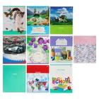Тетрадь 12 листов линейка Super-Mix-19, обложка мелованный картон, 10 видов микс
