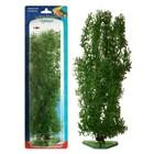 Растение PENN-PLAX STONEWORT-NITELLA, 27см, зеленое