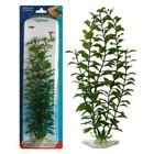 Растение PENN-PLAX BLOOMING LUDWIGIA, 22см, зеленое