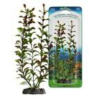 Растение PENN-PLAX RED BLOOMING LUDWIGIA, 18см, с грузом