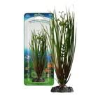 Растение PENN-PLAX HAIRGRASS, 18см, с грузом, зеленое