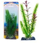 Растение-композиция PENN-PLAX CLUB MOSS-BLOOMING LUDWIGIA, 17см