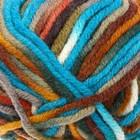 52145 Разноцветный