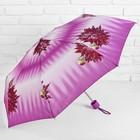 Зонт механический, R=50см, №10 110
