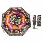 Зонт автоматический, R=50см, №3 23814