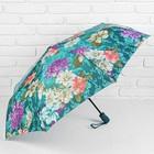 Зонт автоматический, R=50см, №6 23812
