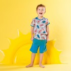 Футболка для мальчика, рост 104 см, цвет серый набивка арбуз 132-005-22