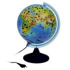 Глобус Зоогеографический детский 250мм с подсветкой Классик Евро Ке012500270
