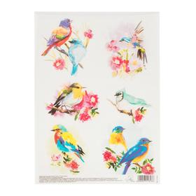 Декупажная карта «Райские птицы», 21 х 29,7 см. Ош