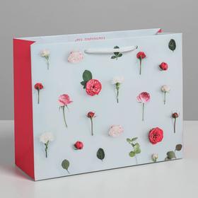 Пакет ламинат горизонтальный «Ты прекрасна», MS 18 х 23 х 8 см