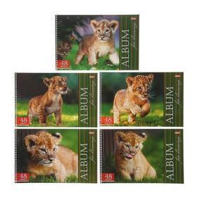 Альбом для рисования А4, 48 листов на гребне «Львенок», обложка мелованный картон, уф-лак, микс Ош