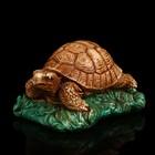 """Сувенир гипс """"Черепаха на траве малая"""" 5,5 см"""
