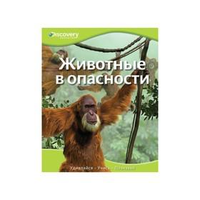 Discovery Education. Животные в опасности. Ош