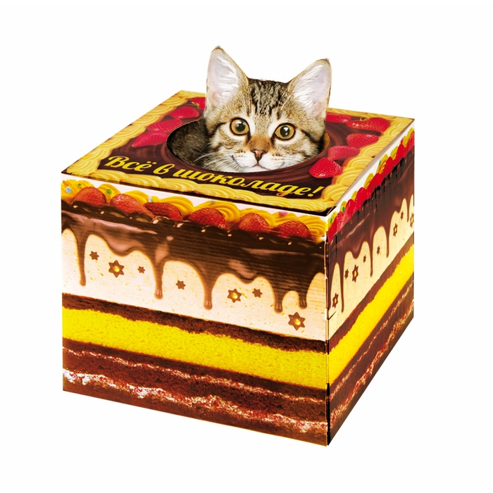 """Домик-коробка с матрасом """"Торт - все в шоколаде"""", вход сверху"""