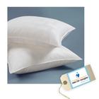 Сертификат на химчистку текстильных изделий: подушка с искусственным наполнителем