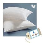 Сертификат на химчистку текстильных изделий: подушка перьевая с заменой наперника (бактерицидная обработка, аквачистка)